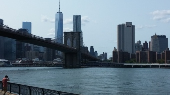 View from Brooklyn Bridge Park